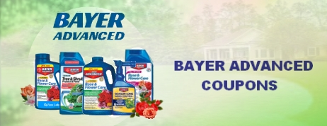 Bayer Advanced coupons